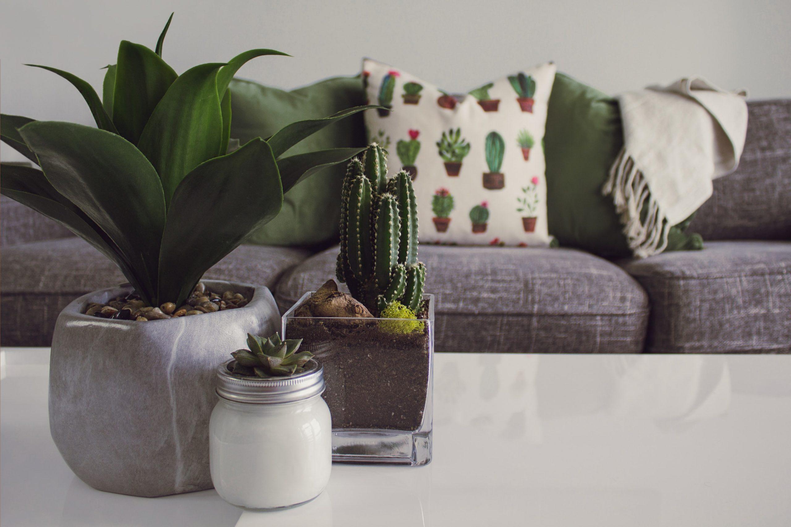 5 astuces pour décorer son intérieur 1